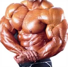 Which steroids are the best
