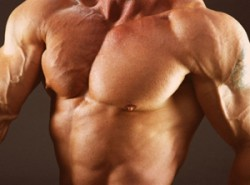 Anabolic Steroids – Buy Steroids Blog – iBuySteroids