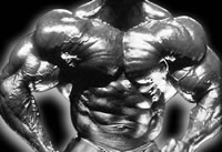 Ripped Muscles Bodybuilding