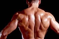 Thread proviron optimizing benefits of steroids