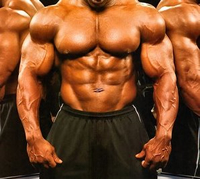 Anabolic Steroids – Buy Steroids Blog – iBuySteroids » Bodybuilding Steroids and You
