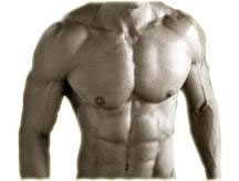 Anabolic Steroids – Buy Steroids Blog – iBuySteroids » Testosterone propionate