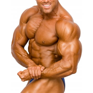 beginner steroid cycle for bulking
