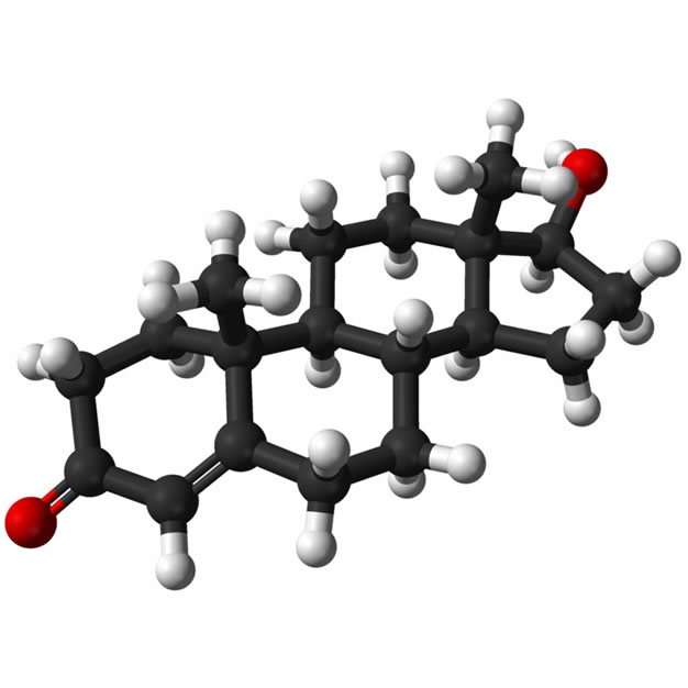 Testosterone_Phenylpropionate