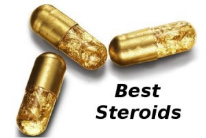 mild steroids for bulking